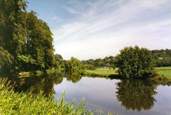 the river wey near godalming